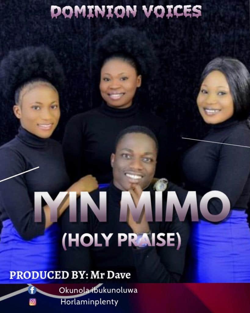 IYIN MIMO mp3 image