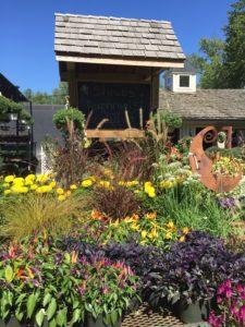 Gossett Brothers Nursery colorful flowers in bloom