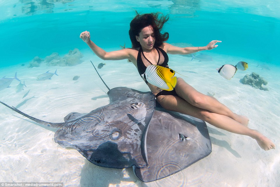 Girl Died Boy Crying Wallpaper Swimming With A Stingray On Her Back Woman Wearing Just A
