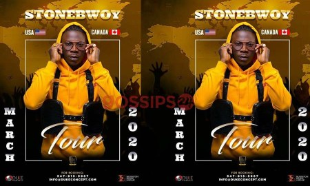 Stonebwoy 2020 world tour