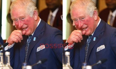 Prince Charles recovers from coronavirus, Prince Charles tests positive for coronavirus