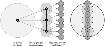 Figure 3: The Self, Centres and Chakras – Expanded view and superimposed view