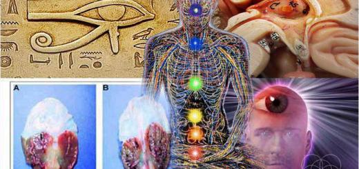 Is the Pineal Gland Being Purposely Suppressed?