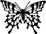farfalla Zodiaco celtico e Sign Signings