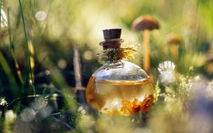 magical potion