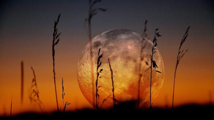 moon-close-up-photography