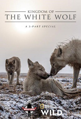 kingdom of the white wolf, national geographic, disney plus