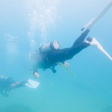墾丁 PADI Open Water Diver 課程心得(上)