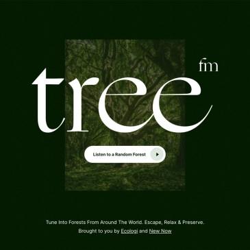 Tree.fm 帶你聆聽世界森林的美好聲音