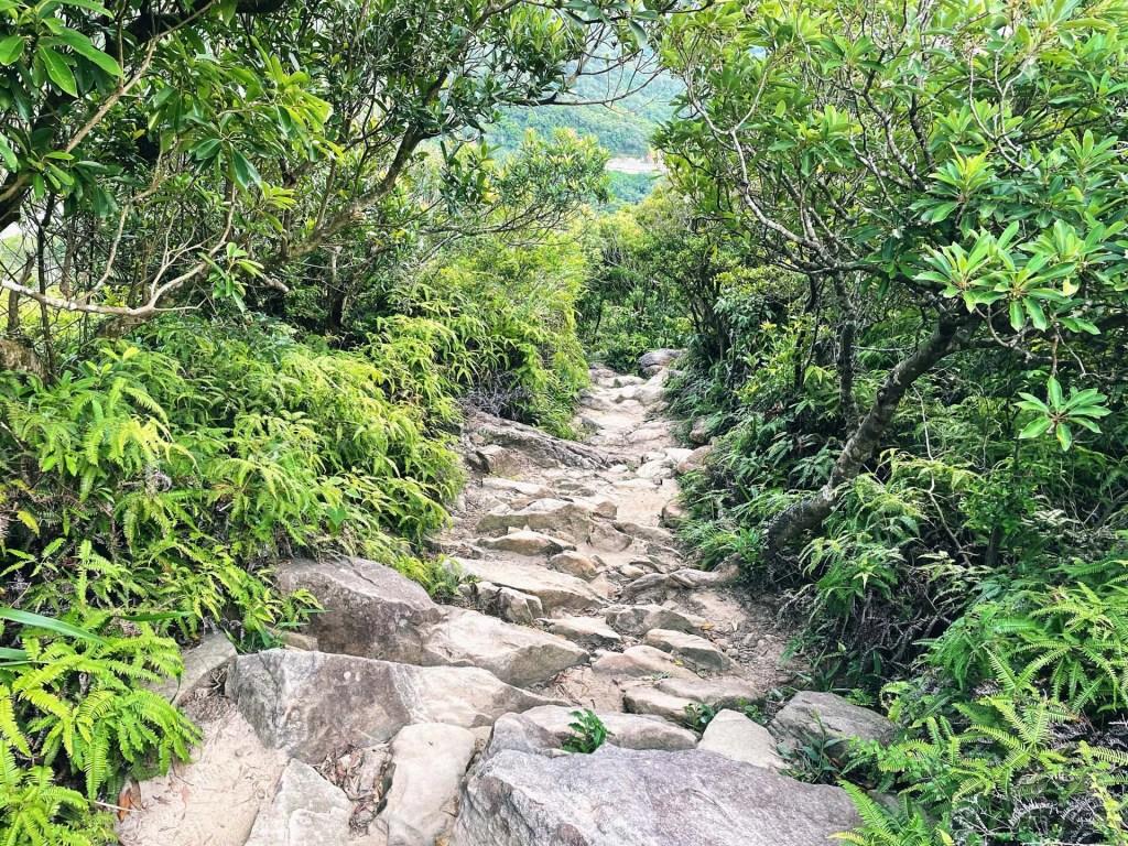 金面山往竹月寺路線