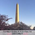 2015 Cherry Blossom Race Recap