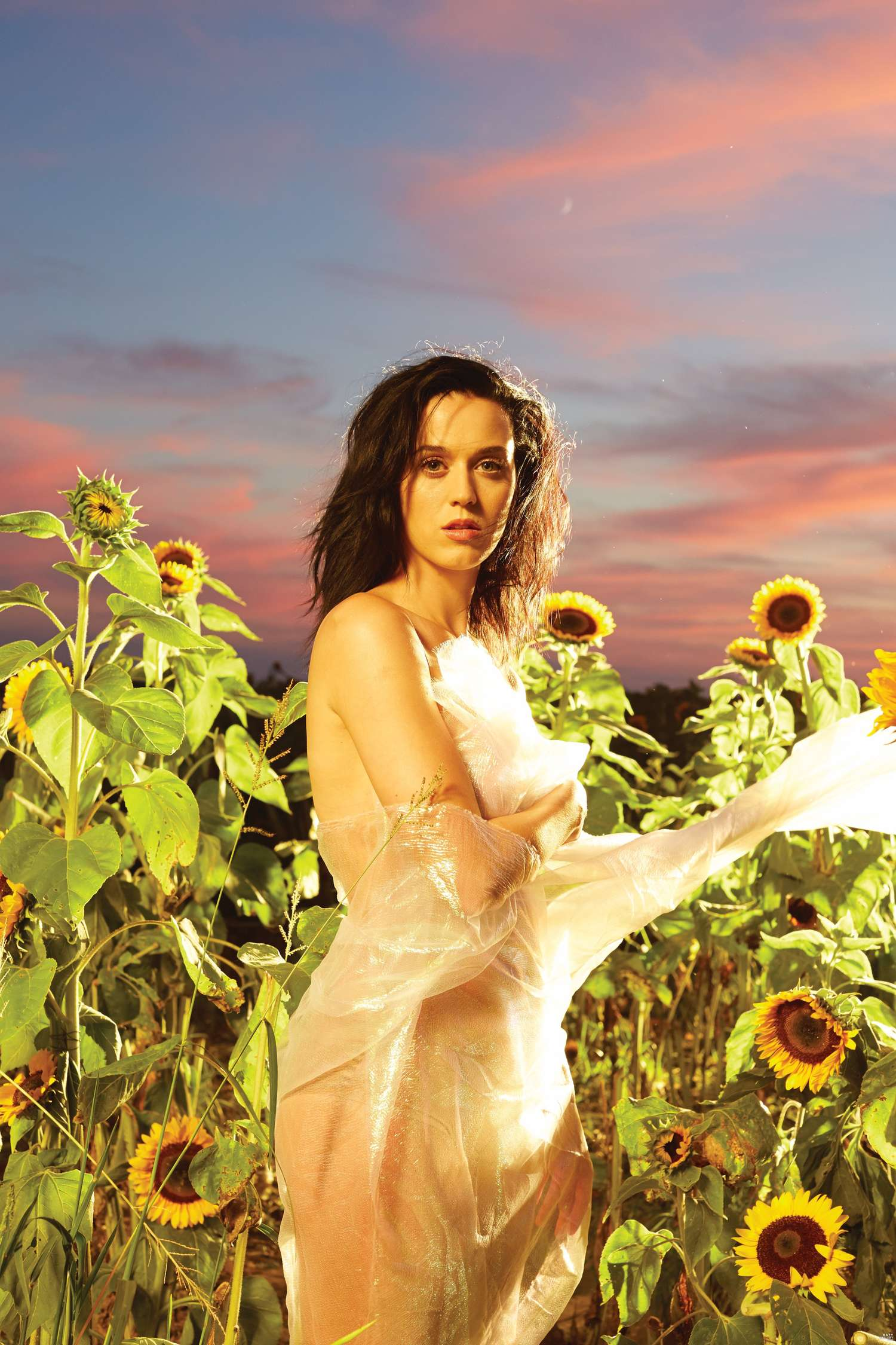 Katy Perry Prism Photoshoot : perry, prism, photoshoot, Perry, Prism, Album, Photoshoot, GotCeleb