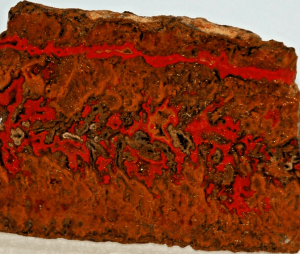 Moroccan Seam Jasper Agate lapidary slab