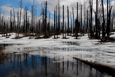 Snowmelt Pond
