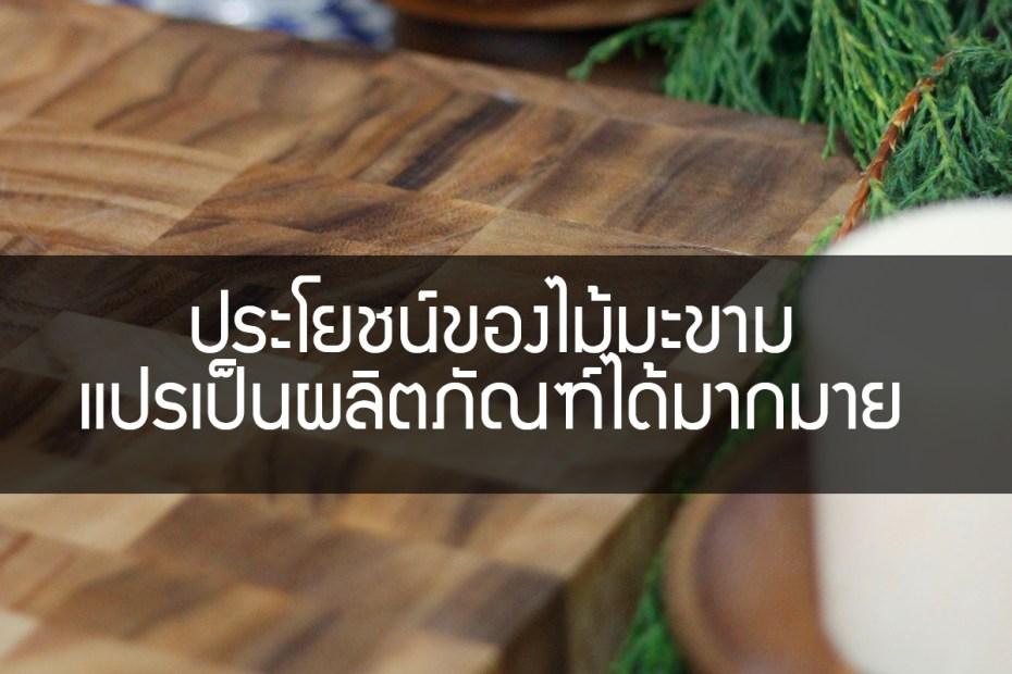 ประโยชน์ของไม้มะขาม แปรเป็นผลิตภัณฑ์ได้มากมาย