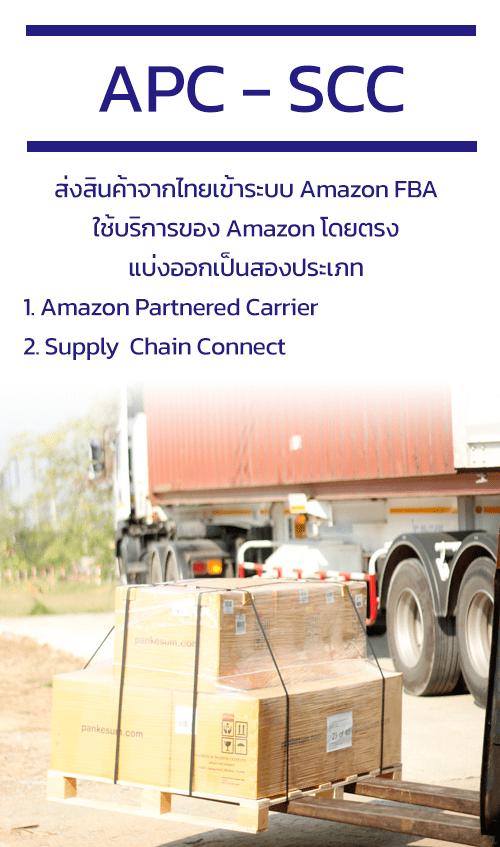 APC - SCC Amazon