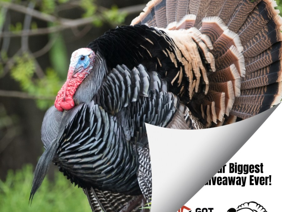 2021 Spring Turkey Hunting Giveaway is Live!