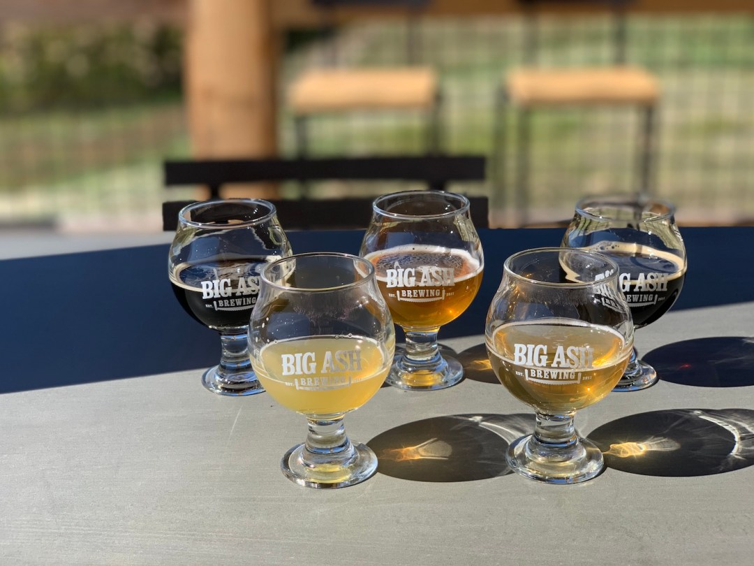 Photo of five beers on the patio