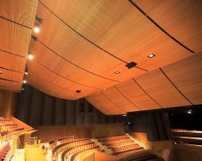 Tiêu âm trần phòng phát với gỗ tiêu âm