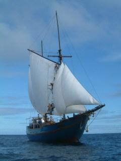 shakti-sails-out
