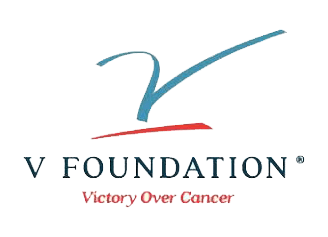 v foundation psi