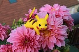 pikacho pokemon