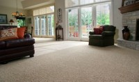 Berber Carpet For Living Room Flooring #2368