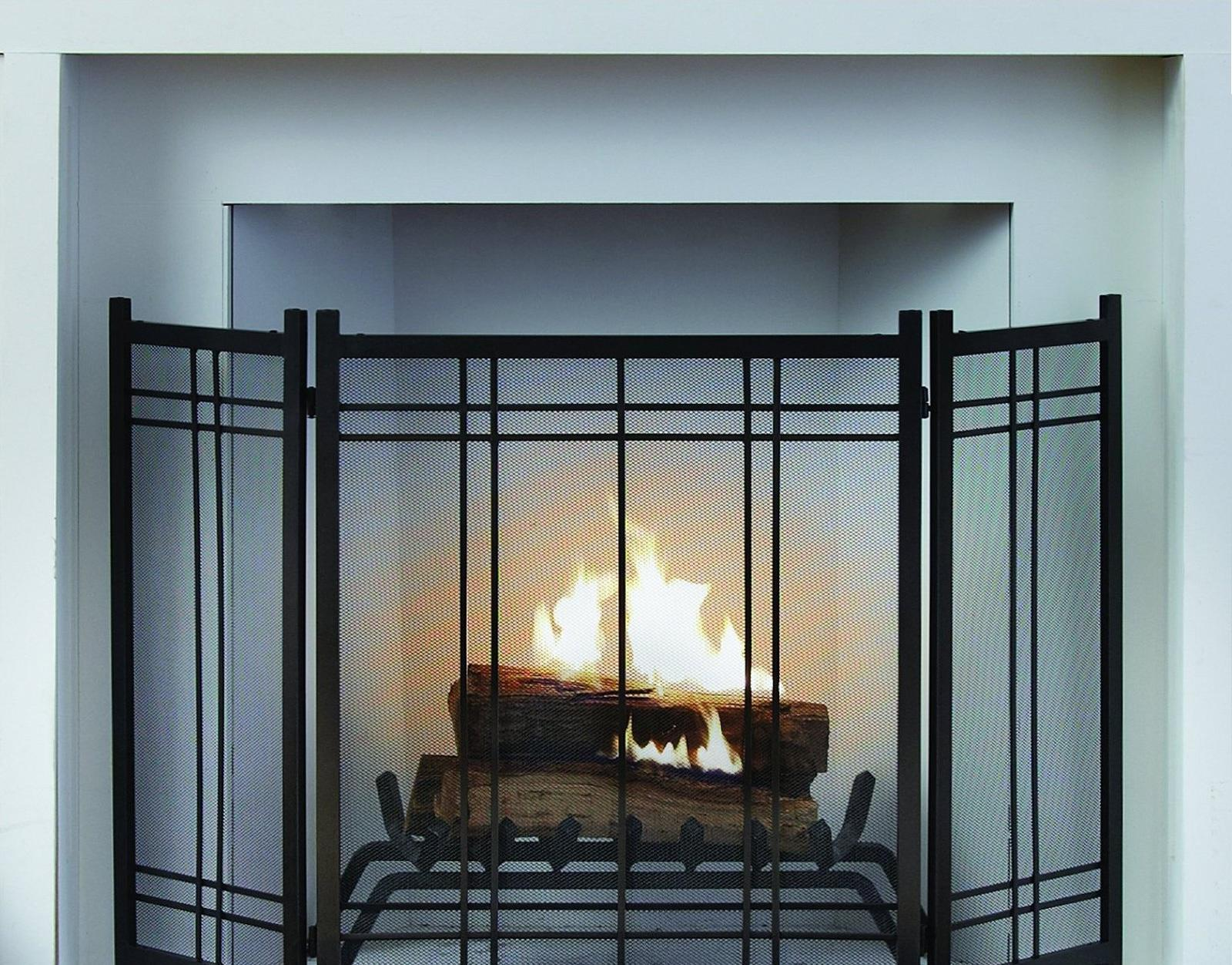 Many Types Of Fireplace Screens