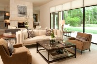 Cozy And Comfortable American Living Room Interior #8001