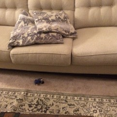 Cindy Crawford Bellingham Sofa Reviews Stickley Review Home The ...