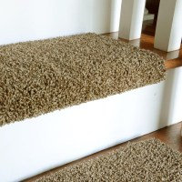 15 Inspirations Carpet Step Covers for Stairs | Stair ...