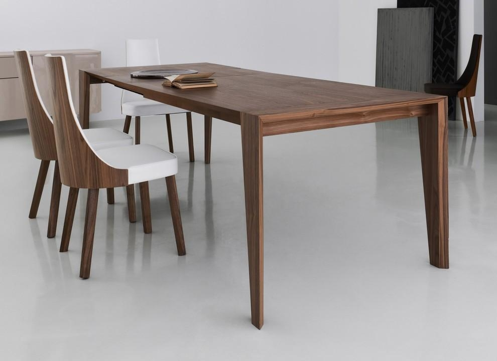 20 Inspirations Contemporary Extending Dining Tables