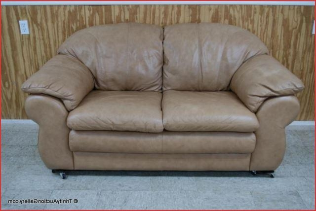 20 Collection Of Divani Chateau Dax Leather Sofas Sofa