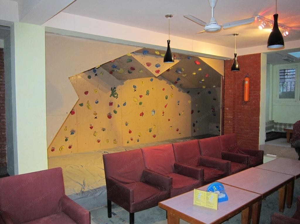 20 Inspirations Home Bouldering Wall Design