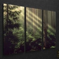 20 Photos Nature Canvas Wall Art | Wall Art Ideas