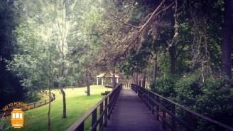 Boticas Parque - NB 2