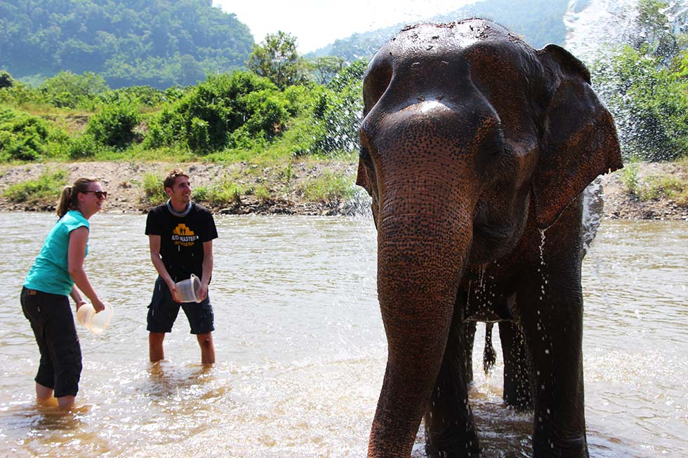 Washing the elephants at Elephant Nature Park