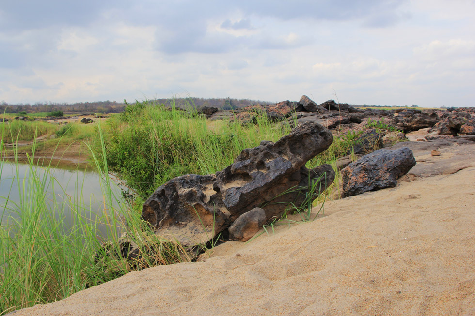 Coral looking like a crocodile at Sam Phan Bok Canyon