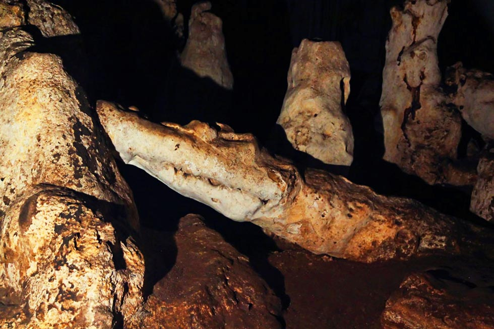 A 'crocodile' in Tham Lod's Doll Cave
