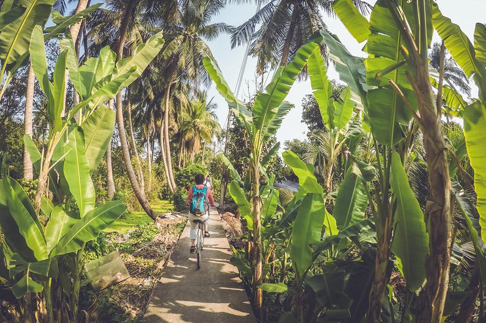 Biking along paddy fields and banana trees - Cycling in Bangkok