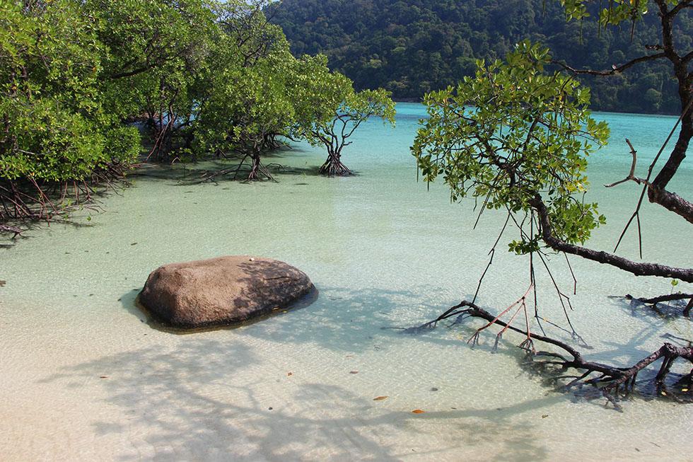 The beauty of Ao Mai Ngam
