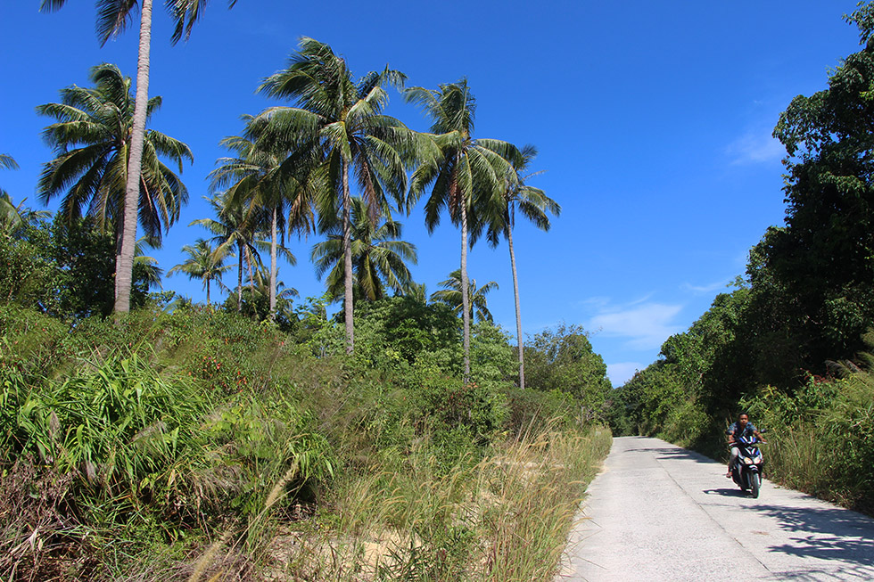 The roads of Koh Phayam