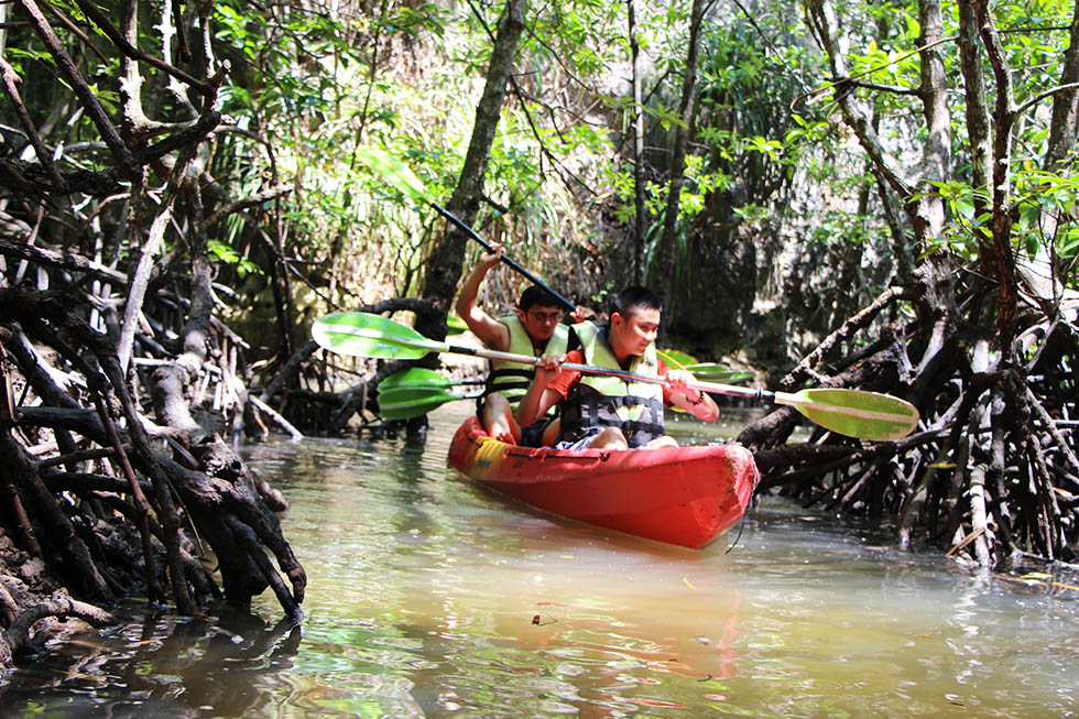 The narrow mangrove waterways were a lot of fun - Tha Lane Bay in Krabi