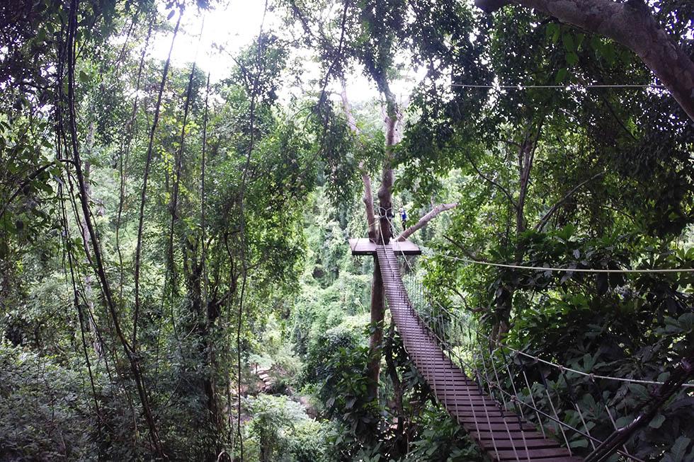 Crossing the wooden bridge - Ziplining Chiang Mai