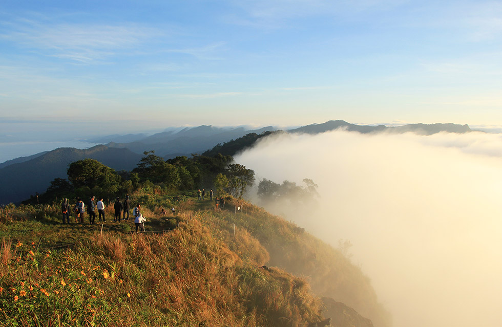 Phu Chi Fah's misty mountains