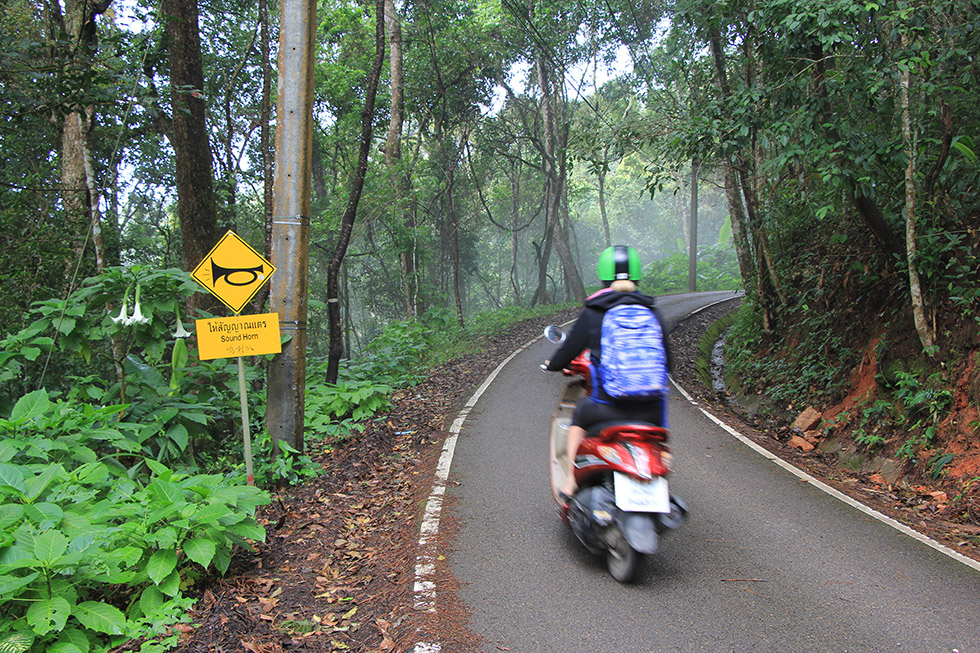 Driving the motorbike further to Doi Suthep's top