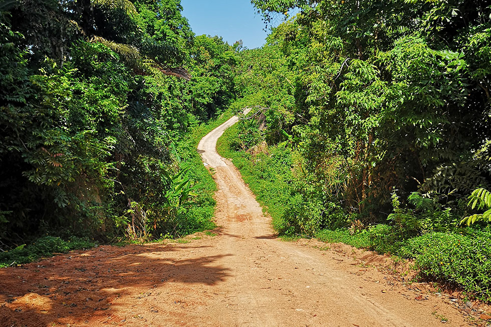 Dirt road leading to Mango Viewpoint, Koh Tao