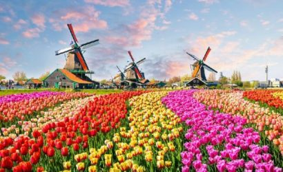 6-Day Central and Western Europe Holiday: Prague to Amsterdam