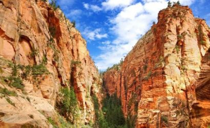 Private Zion National Park Fully Customizable Group Tour