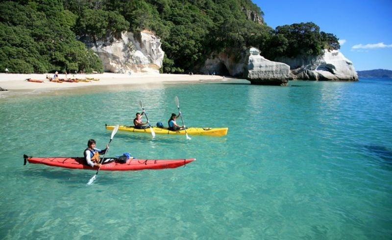 20 Day New Zealand Tour From Auckland to Christchurch